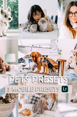 Pets Preset for lightroom to design instagram presets